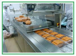 Features of Automatic Continuous Vacuum Packing Machine